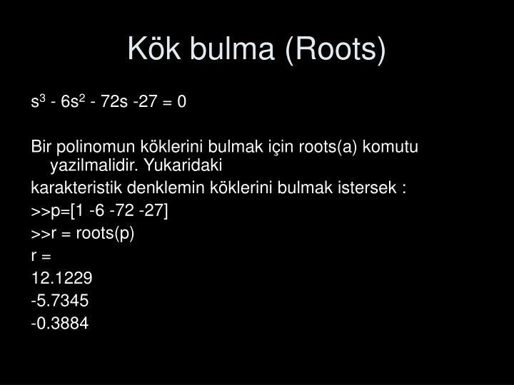 Kök bulma (Roots)