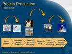protein production technology