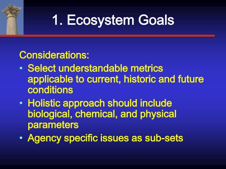 1. Ecosystem Goals