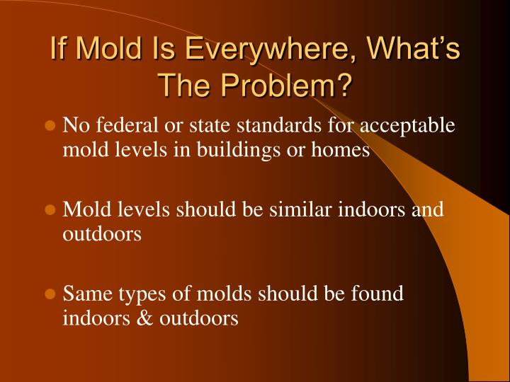 If Mold Is Everywhere, What's The Problem?