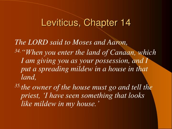 Leviticus, Chapter 14