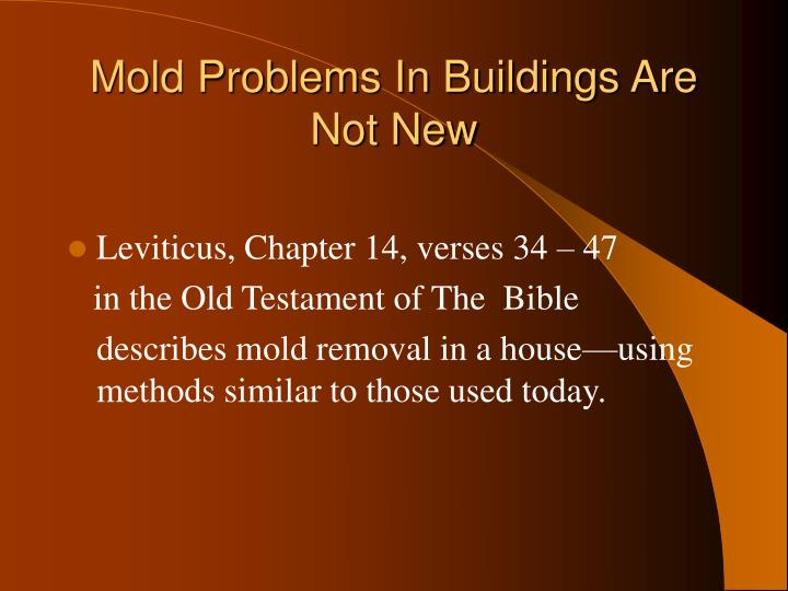 Mold Problems In Buildings Are Not New
