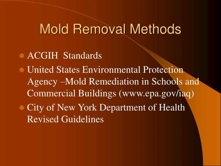 Mold Removal Methods