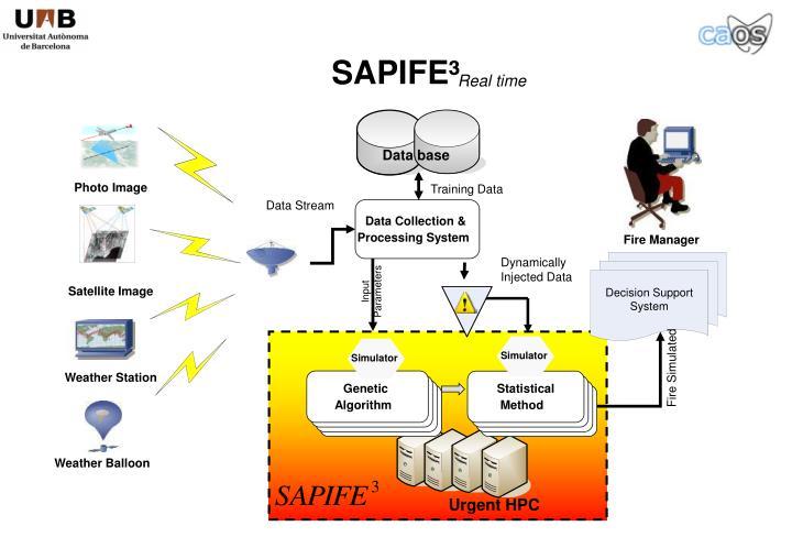 SAPIFE³