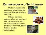 os moluscos e o ser humano