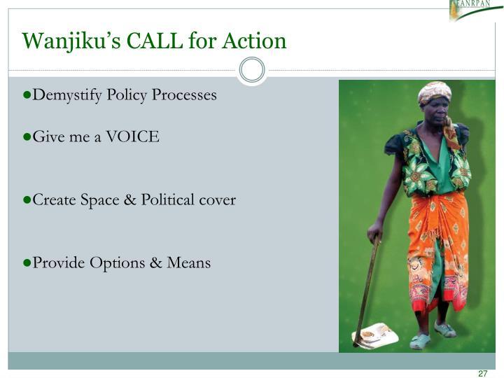 Wanjiku's CALL for Action