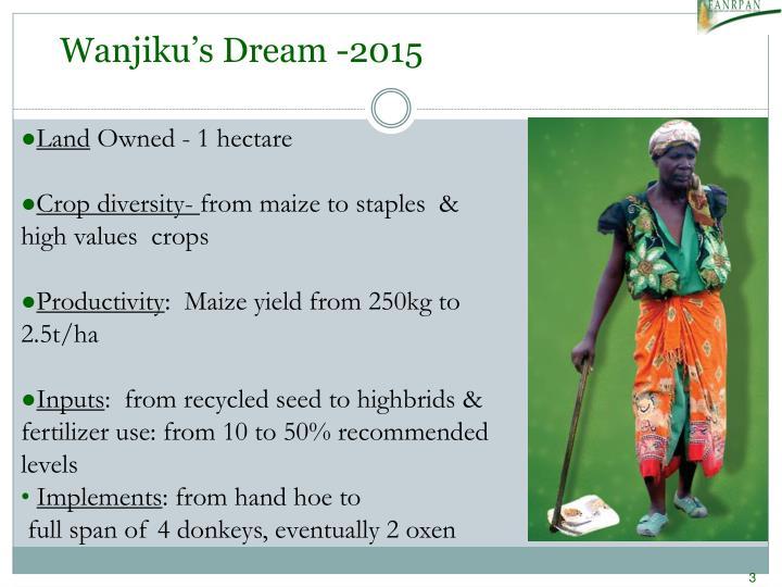 Wanjiku's Dream -2015