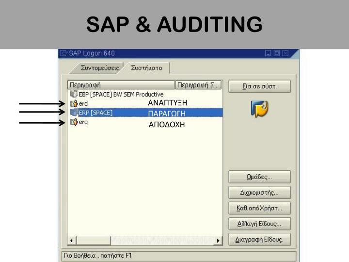 SAP & AUDITING