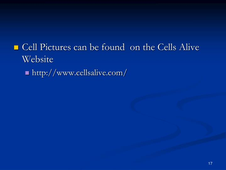 Cell Pictures can be found  on the Cells Alive Website