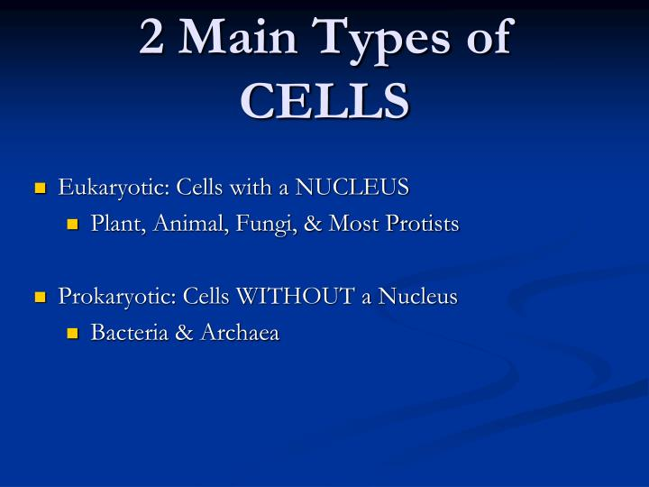 2 Main Types of CELLS