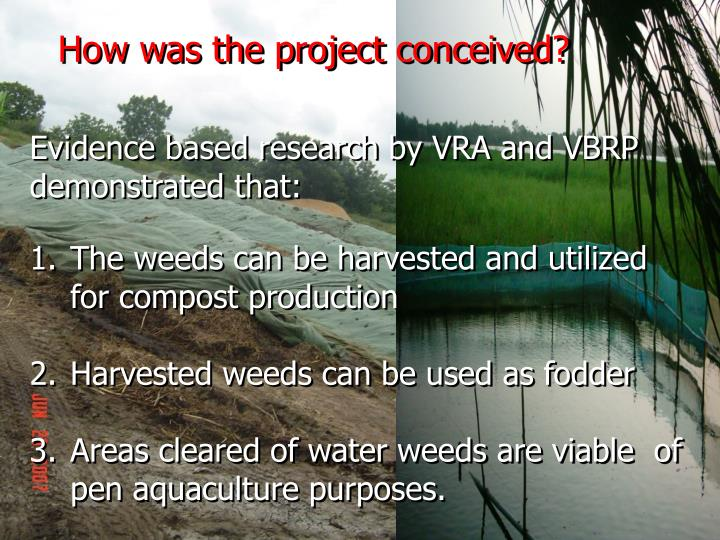 How was the project conceived?
