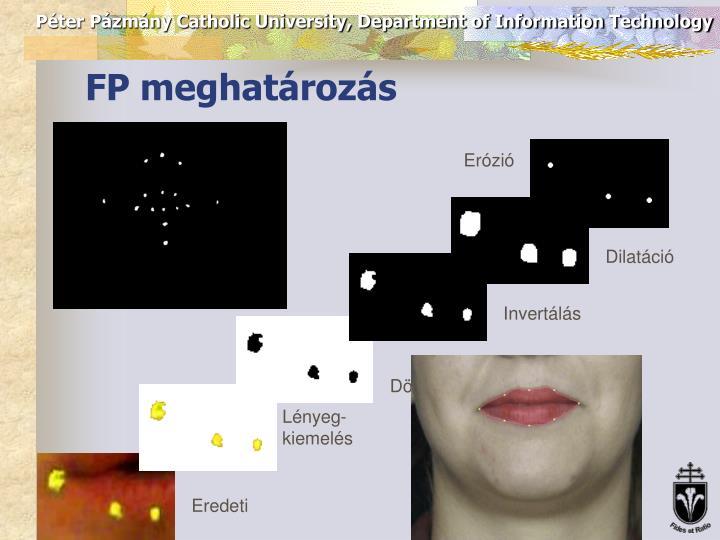 FP meghatározás