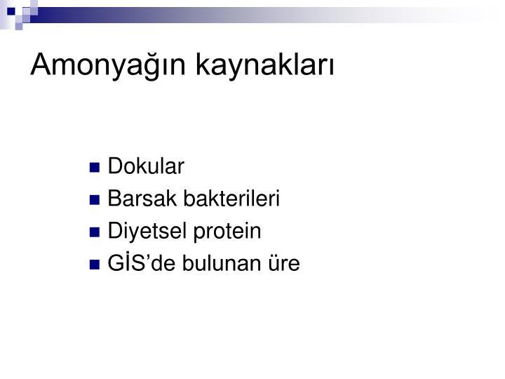 Amonyağın kaynakları