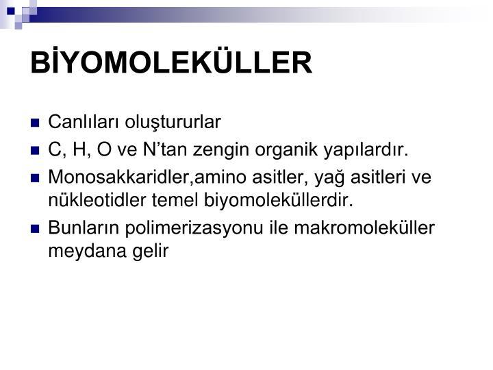 BİYOMOLEKÜLLER