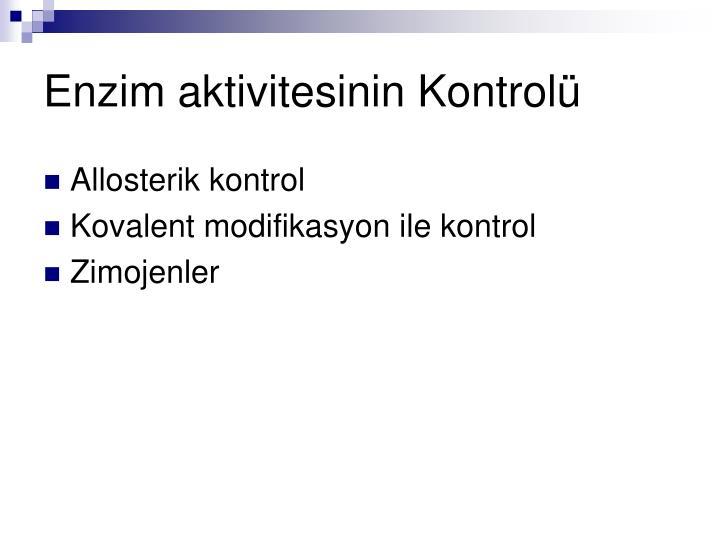 Enzim aktivitesinin Kontrolü