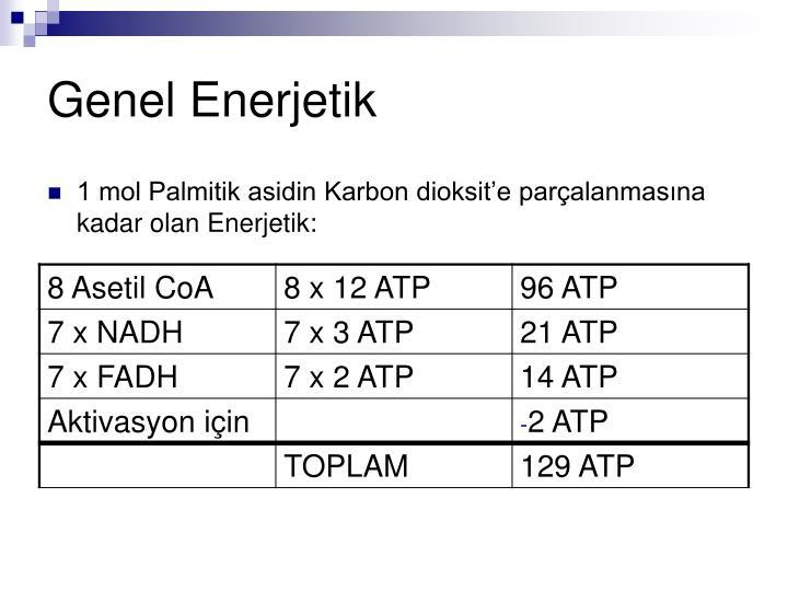 Genel Enerjetik
