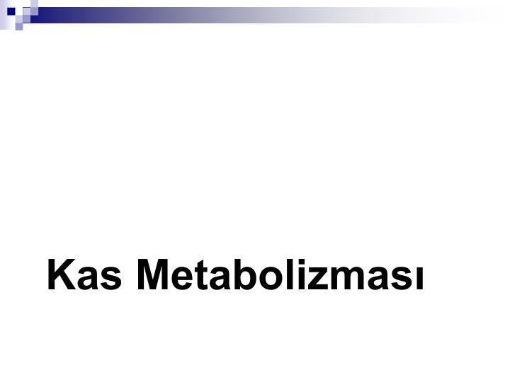 Kas Metabolizması