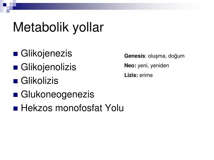 Metabolik yollar