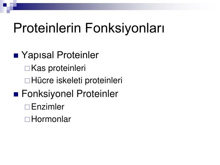 Proteinlerin Fonksiyonları