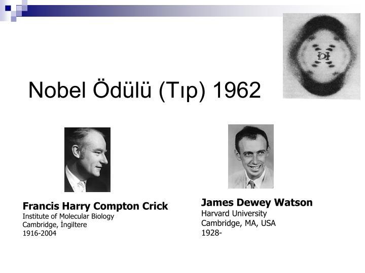 Nobel Ödülü (Tıp) 1962
