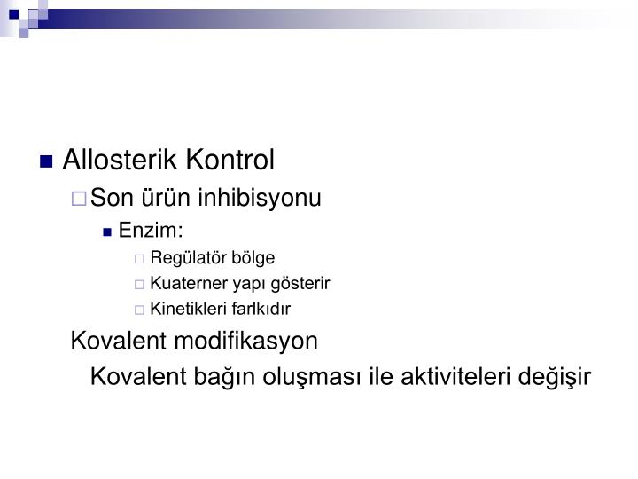 Allosterik Kontrol