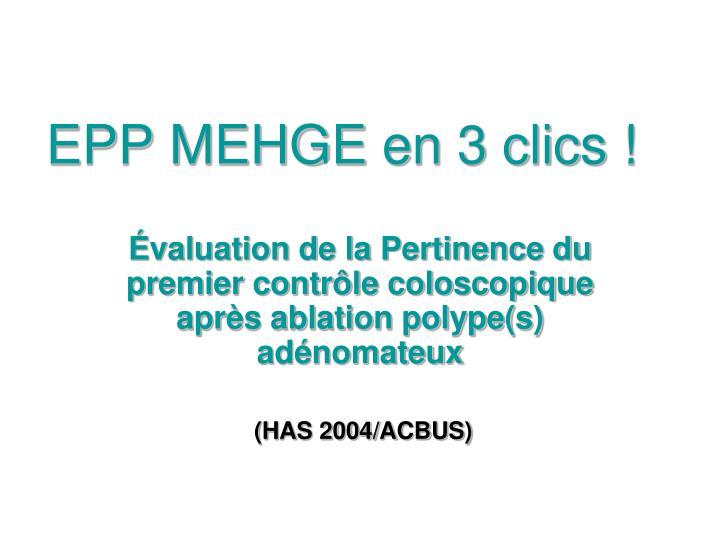EPP MEHGE