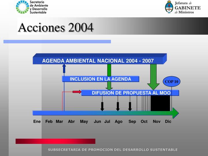 Acciones 2004
