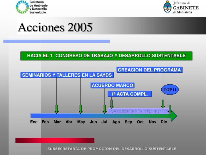 Acciones 2005