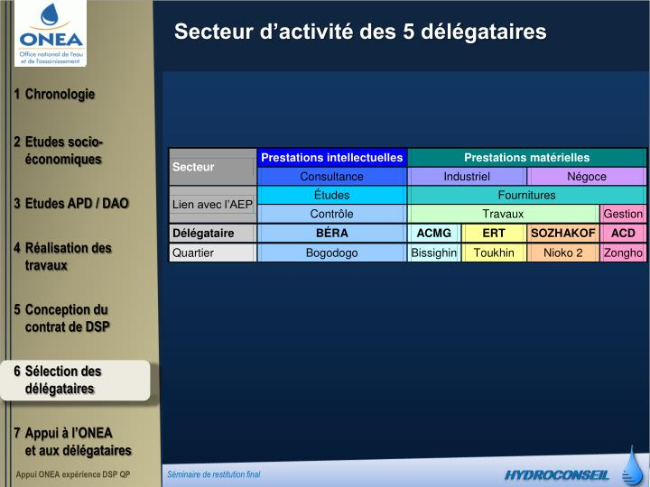 Secteur d'activité des 5 délégataires