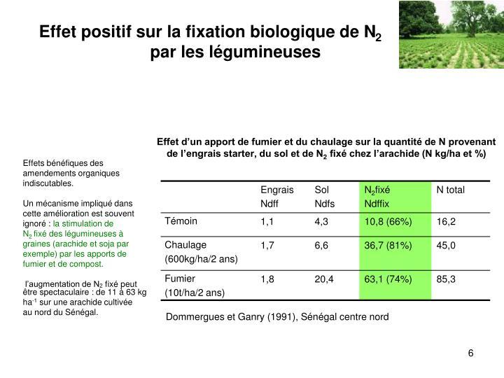 Effet d'un apport de fumier et du chaulage sur la quantité de N provenant de l'engrais starter, du sol et de N