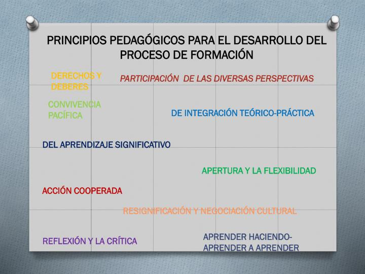 PRINCIPIOS PEDAGÓGICOS PARA EL DESARROLLO DEL PROCESO DE FORMACIÓN