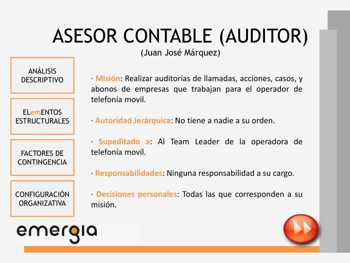 ASESOR CONTABLE (AUDITOR)