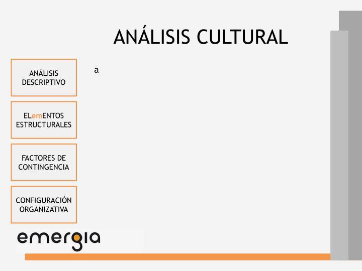 ANÁLISIS CULTURAL