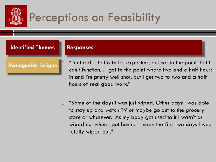 Perceptions on Feasibility