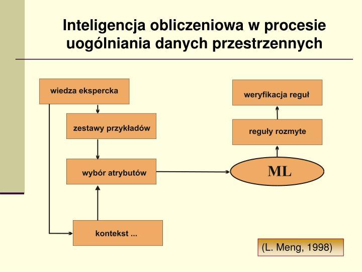 Inteligencja obliczeniowa w procesie uogólniania danych przestrzennych