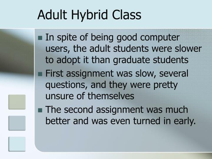 Adult Hybrid Class