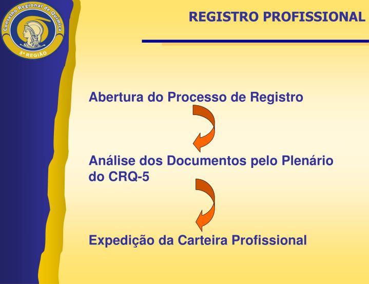 REGISTRO PROFISSIONAL