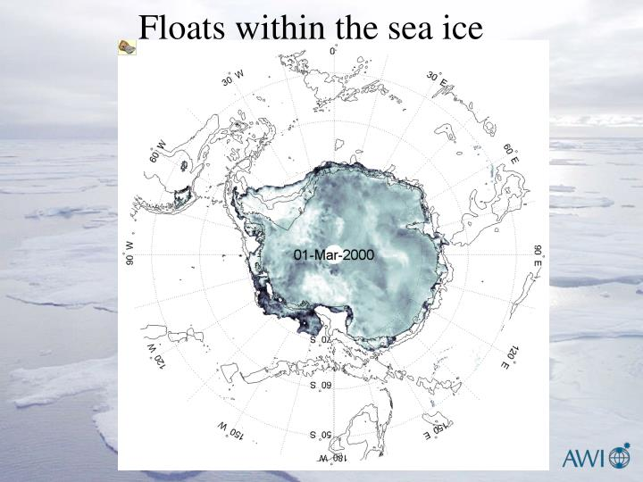 Floats within the sea ice