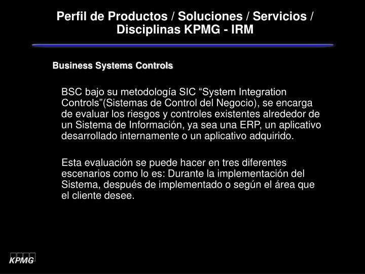 Business Systems Controls