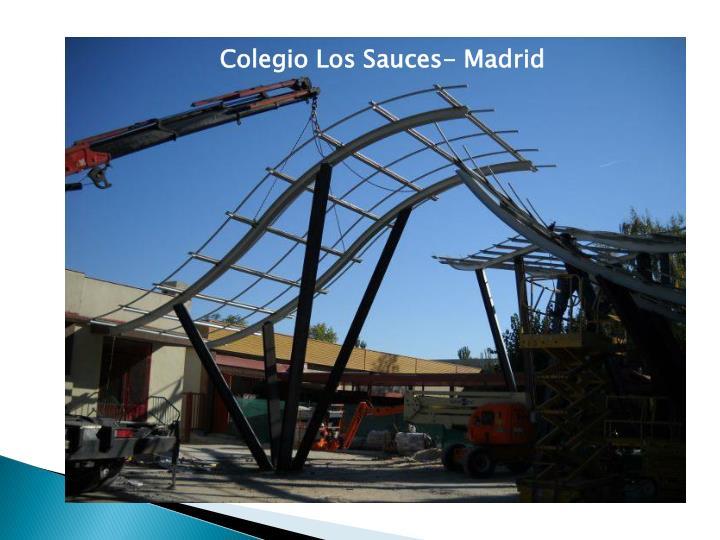 Colegio Los Sauces- Madrid