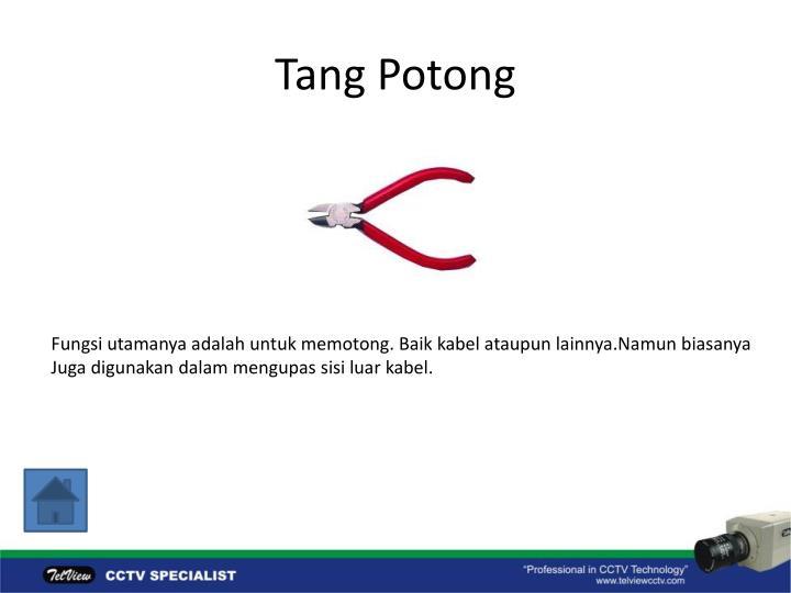 Tang Potong