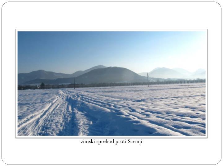 zimski sprehod proti Savinji