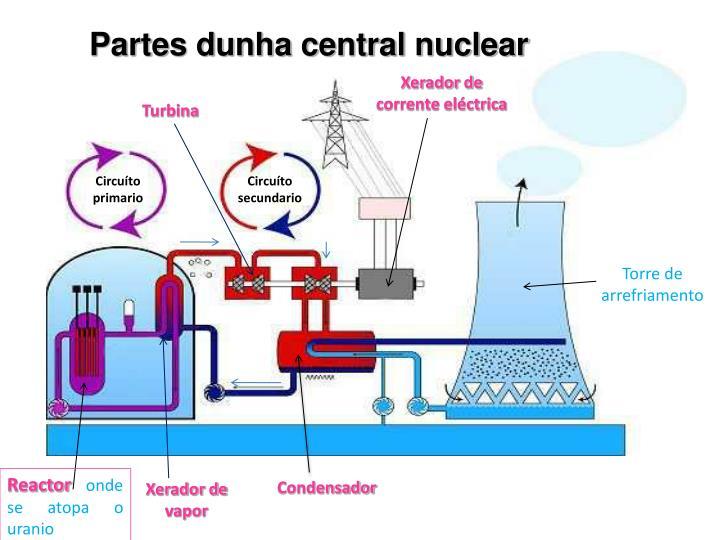 Partes dunha central nuclear