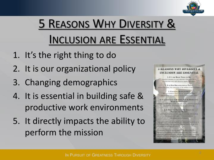 5 Reasons Why Diversity &