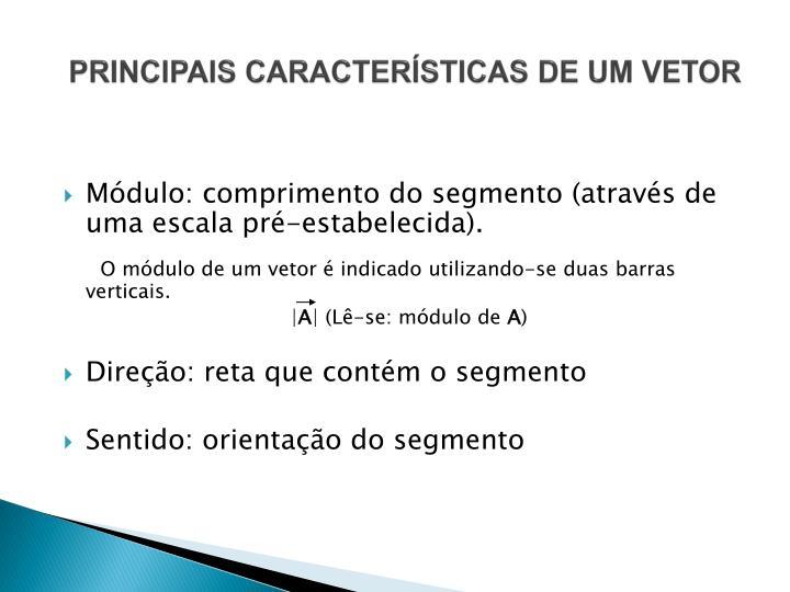 PRINCIPAIS CARACTERÍSTICAS DE UM VETOR