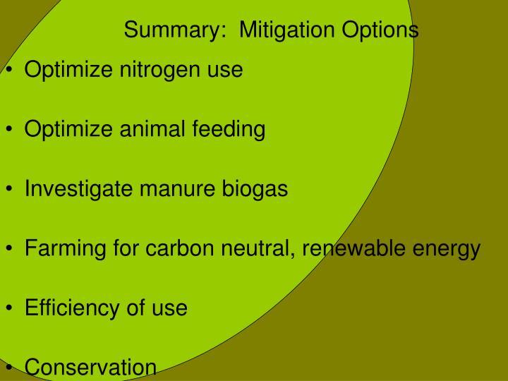 Summary:  Mitigation Options