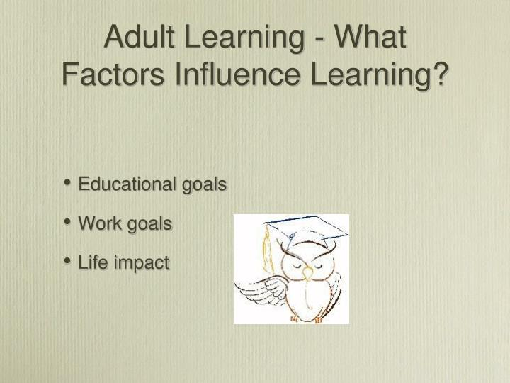 Adult Learning - What Factors Influence Learning?