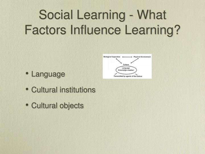 Social Learning - What Factors Influence Learning?