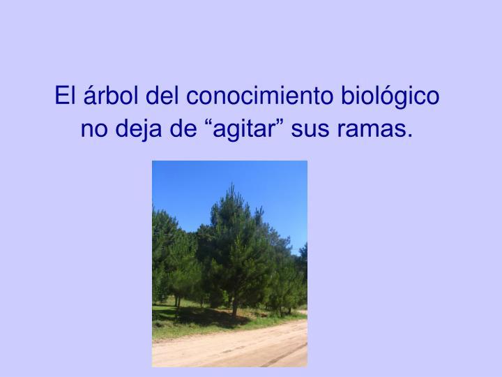 """El árbol del conocimiento biológico no deja de """"agitar"""" sus ramas."""
