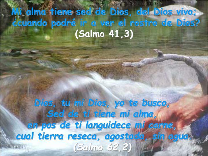 Mi alma tiene sed de Dios, del Dios vivo;